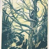 """""""Abel Tasman 1"""", 2014, gouache & lithography on paper, 8 x 6"""""""