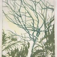 """""""Abel Tasman 2"""", 2014, gouache & lithography on paper, 8 x 6"""""""