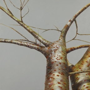 """Tree #7"", 2013, oil on canvas, 24 x 24"""