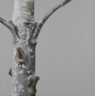 """Tree #8"", 2013, oil on canvas, 20 x 20"""