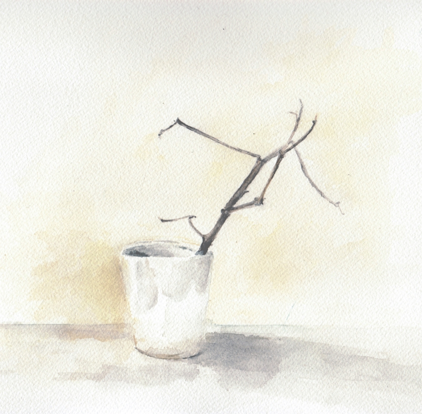 "Kimberly Clark, ""White Cup with Cotton Branch study"", 2015, watercolor on paper, 8 x 8"""