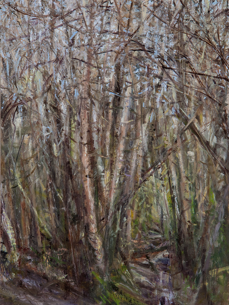 """Birch Grove II"", 2014, oil on panel, 16 x 20"""