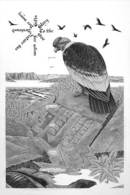 andean-condor-web